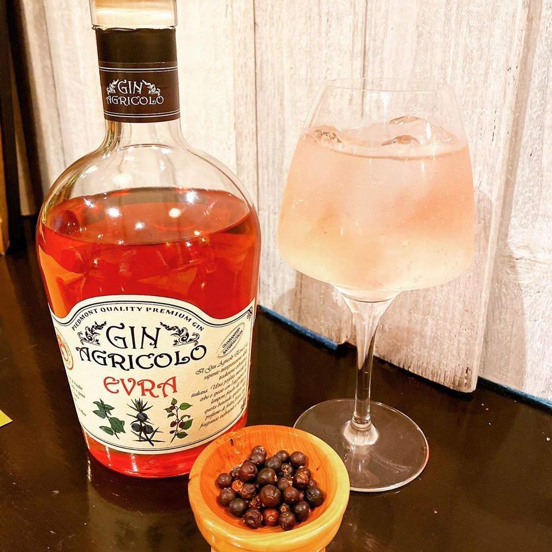 Billed af en cocktail med Gin Agricolo Evra
