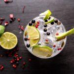 Billede af en gin og tonic guide